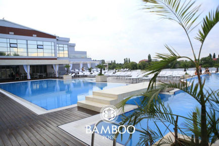BambooPool1